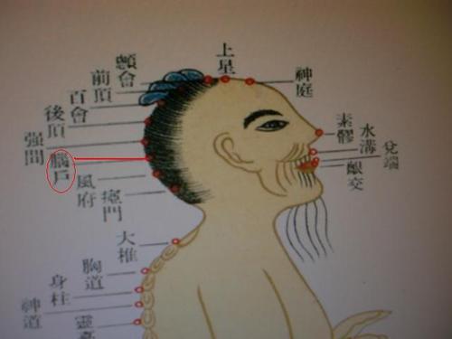 女穴����9��_脑户穴的功效作用丨一点就通,点穴治病,针灸治病,按摩治病,1d9t.